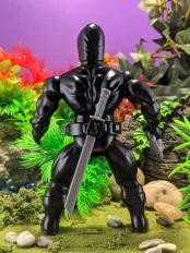 Ninja13
