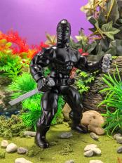 Ninja5